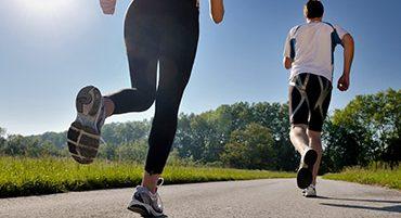 12 alkalmas edzésterv